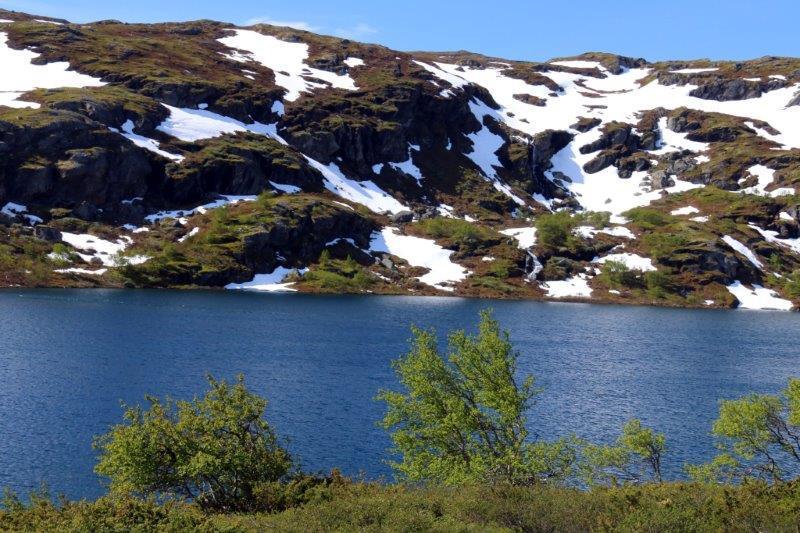 Norway Big Camera 096