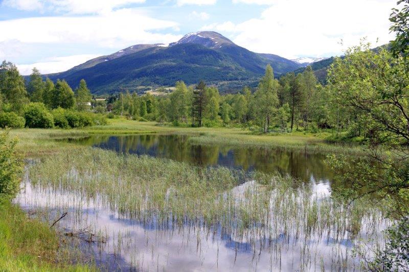 Norway Big Camera 134
