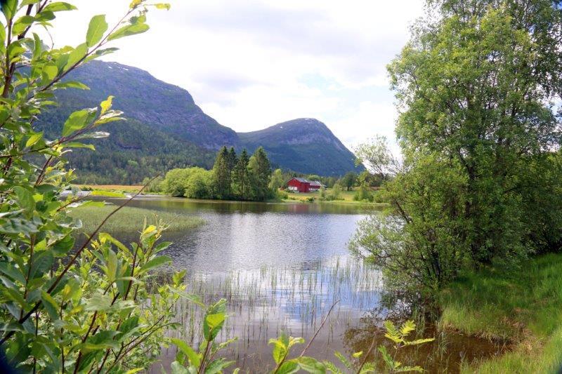 Norway Big Camera 137