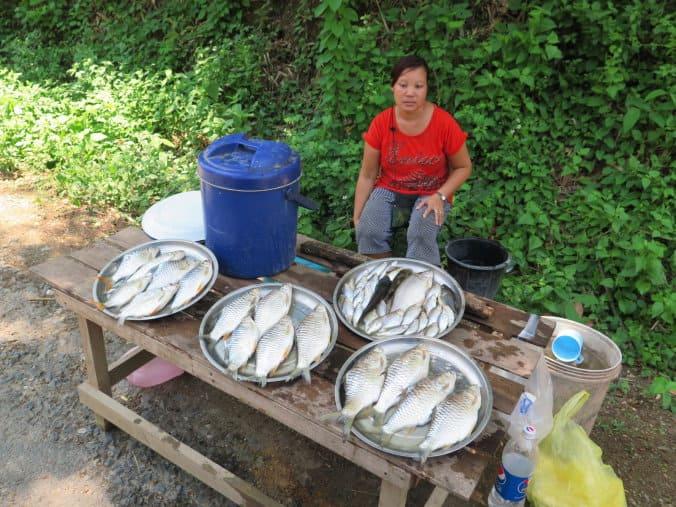 AA11 Laos 059